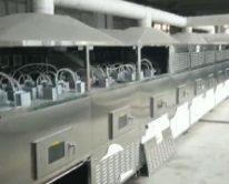 Линия по производству сухих кормов